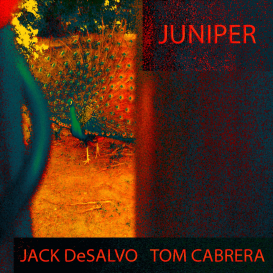 Album Juniper by Jack DeSalvo